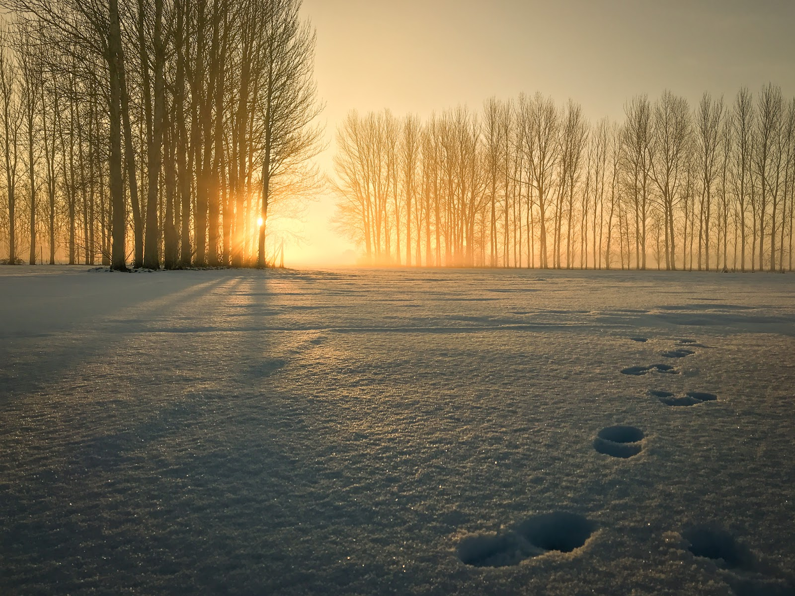 iPhone photography- landscape with footprints